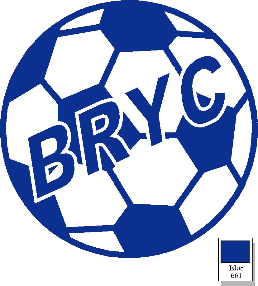 Support BRYC with your (much appreciated!) donation